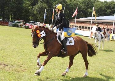 Goldene Schärpe 2016 - Deutschlandpreis der Ponyvielseitigkeit