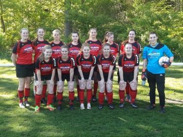 Pokalfinale erreicht!!! A-Juniorinnen besiegen Diepholz mit 6:1 !!!